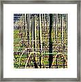 Vines Poles 22649 Framed Print