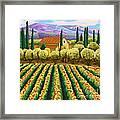 Vineyard With Olives Tuscany Framed Print