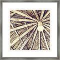 Vintage Reed Roof Framed Print