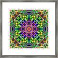 Violet Cosmos Mandala Framed Print