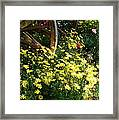 Wagon Wheel Flowers Framed Print