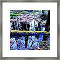 Walk Right Into The Nature's Fairytale With Me  Framed Print