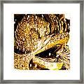 Wascana-53 Framed Print