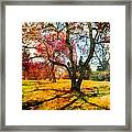 Washington Park I Framed Print