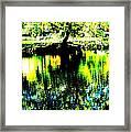 Washington Park Framed Print