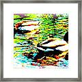 So Water Dance Is For Dancing Ducks  Framed Print
