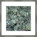 Water Jewel Framed Print