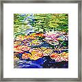 Water Lilies Framed Print
