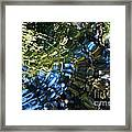 Water Reflections 4 Framed Print