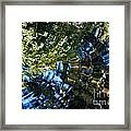Water Reflections 5 Framed Print