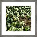Watermelon Man Watermelon Stand Framed Print by William Fields