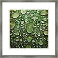 Raindrops On Watermelon Rind Framed Print