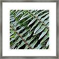 Waves Of Green Framed Print