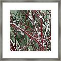 Weed Bush Framed Print