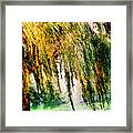 Weeping Willow Tree Painterly Monet Impressionist Dreams Framed Print