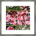 Welcome Spring Collage Framed Print