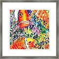 Where's Nemo I Framed Print