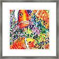 Where's Nemo I Framed Print by Ann  Nicholson