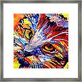 Whiskers Framed Print