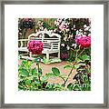 White Bench And Pink Climbing Roses In English Garden Framed Print
