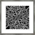 White On Black Framed Print by Lorraine Heath