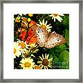 White Peacock Butterfly I V Framed Print