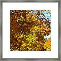 Whiting New Jersey Framed Print