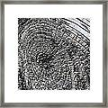Why Knot 2 Framed Print