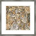 Wild Cat Spread Framed Print