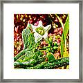 Wild Cucumber In Park Sierra Near Coarsegold-california  Framed Print