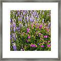 Wild Flowers Display Framed Print