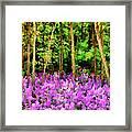 Wild Forest Violets Framed Print