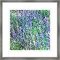 Wild In Blue Framed Print
