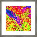 Wild N Crazy Butterfly Framed Print by Kim Galluzzo Wozniak