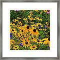 Wildflower Gold Framed Print