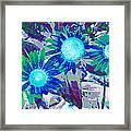 Wildflower Framed Print by Tom Druin