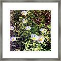 Wildflower Wandering Framed Print