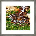 Wildflower Waterfall Framed Print