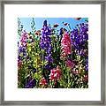 Wildflowers #14 Framed Print
