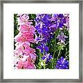 Wildflowers #16 Framed Print