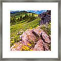 Wildflowers And Pink Rocks Framed Print