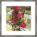 Window Flowers Framed Print