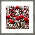 Winter Berryscape Framed Print