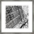 Winter In The City Framed Print