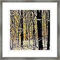 Winter Mood Lighting Framed Print