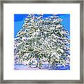 Winter Painting Framed Print