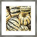 Winter Squash Framed Print