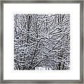 Winter Storm Framed Print