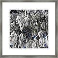Winter's Paintbrushes Framed Print