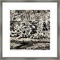 Winter's Sepia Grip Framed Print